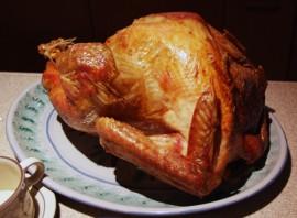 turkey2007.jpg